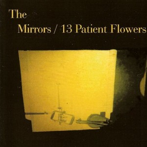 mirrors - 13 patient